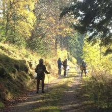 Wandeling bij Niedersfeld