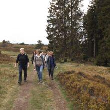 Wandeling Hochheide Niedersfeld
