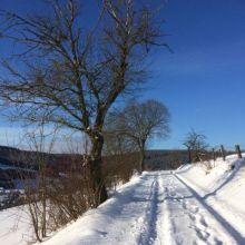 Sneeuwlandschap bij Savita